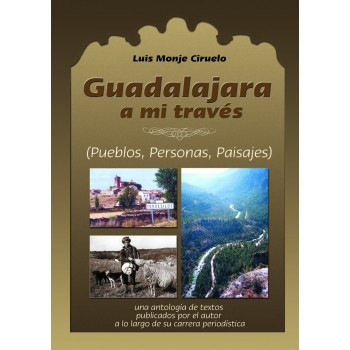 Guadalajara a mi través