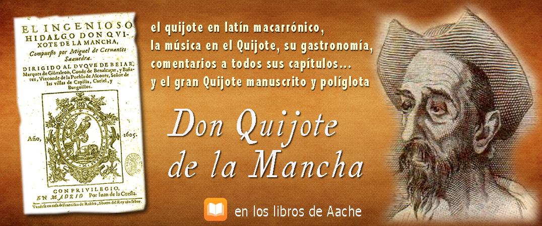 Don Quijote de la Mancha por Aache