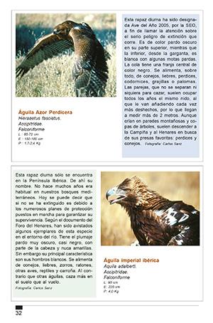 Aves en el Henares