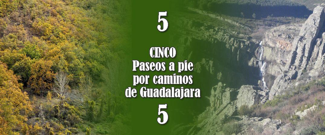 5 Paseos a pie por los caminos de Guadalajara 5