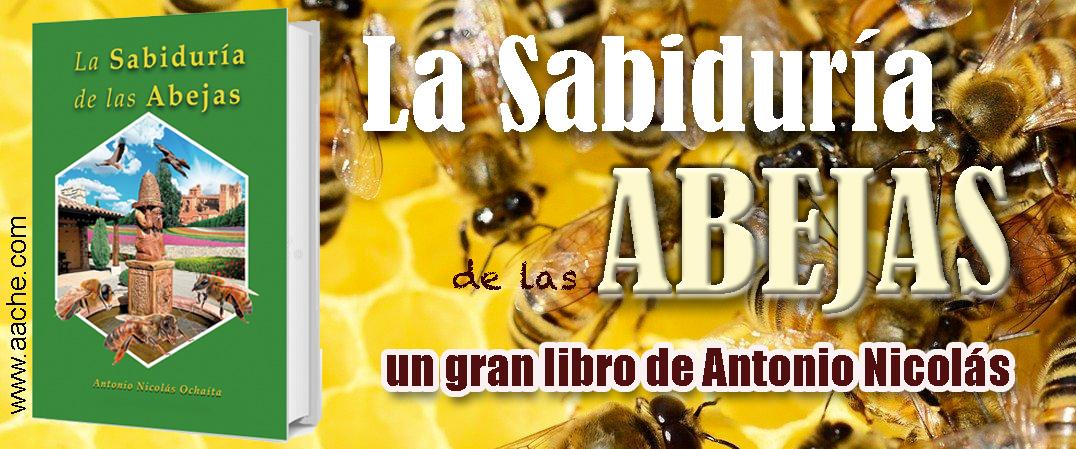 La sabiduría de las abejas