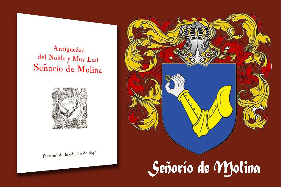 Molina de Aragón escudo heráldico