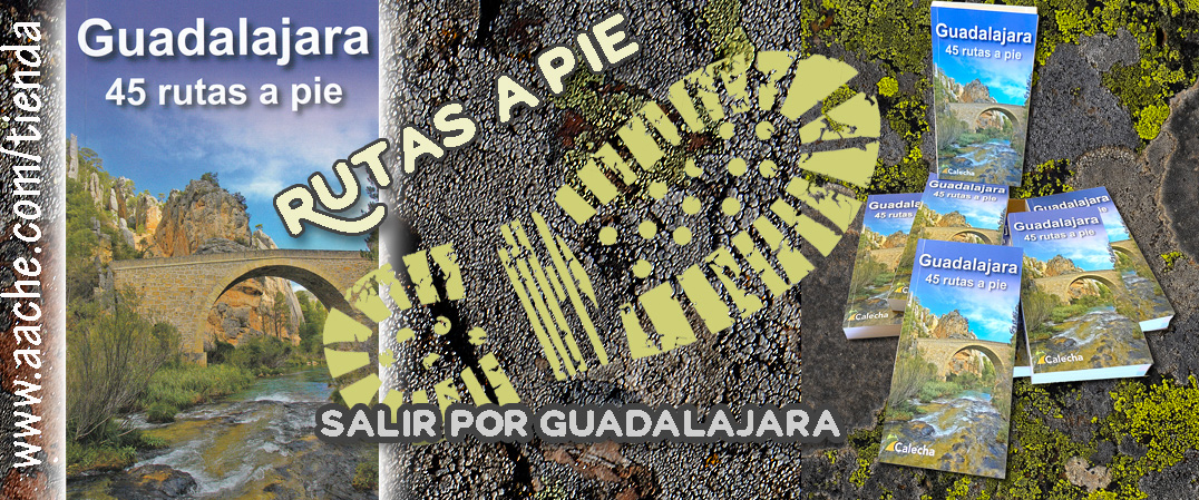 45 Rutas a Pie por Guadalajara